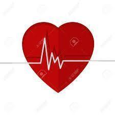 心臓と寿命
