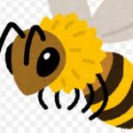 蜜蜂と遠雷